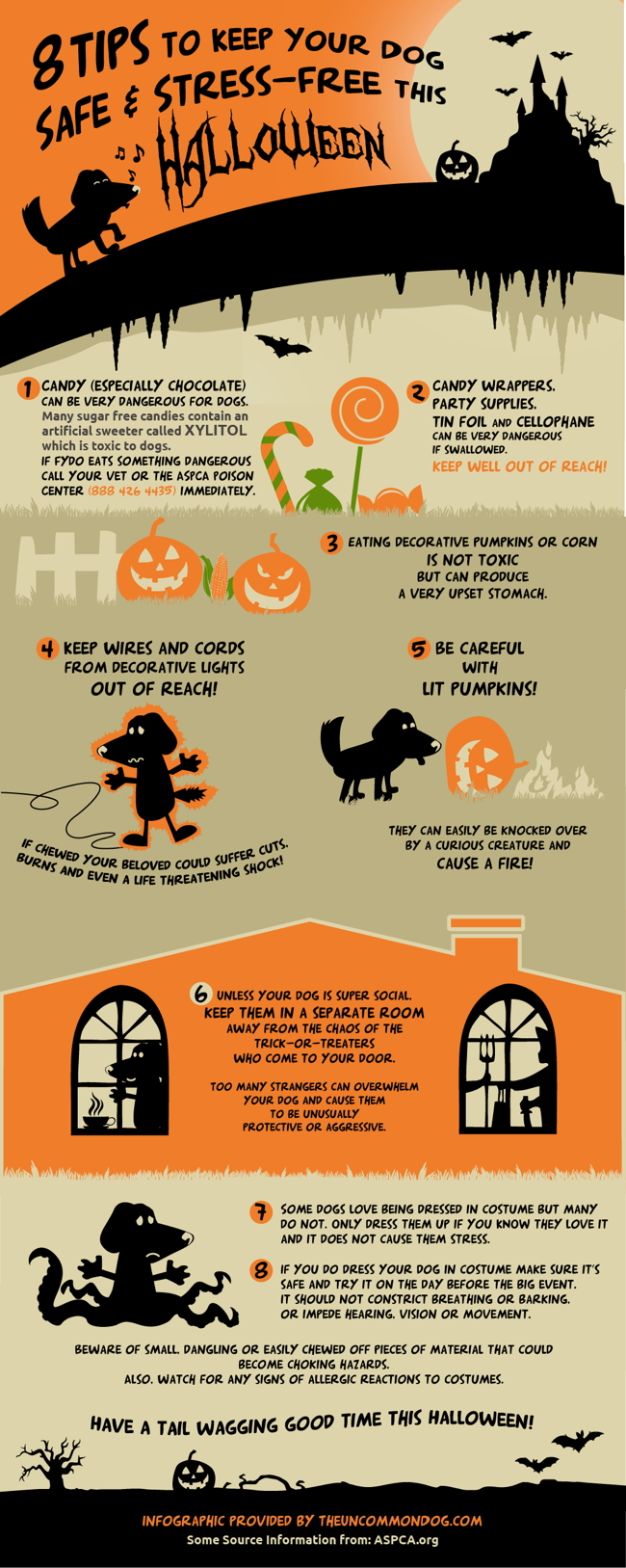 8-haloween-safety-tips